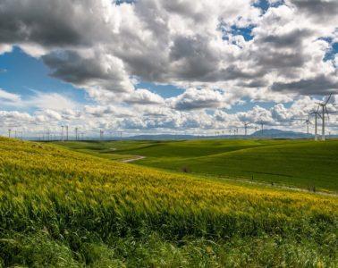 wind-farm-1209784_1280