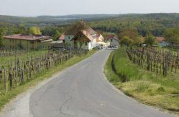 cropped-gasthaus-zum-weinberg